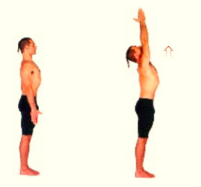 Ashtanga Yoga Sun Salutation Book | Olive Retreat