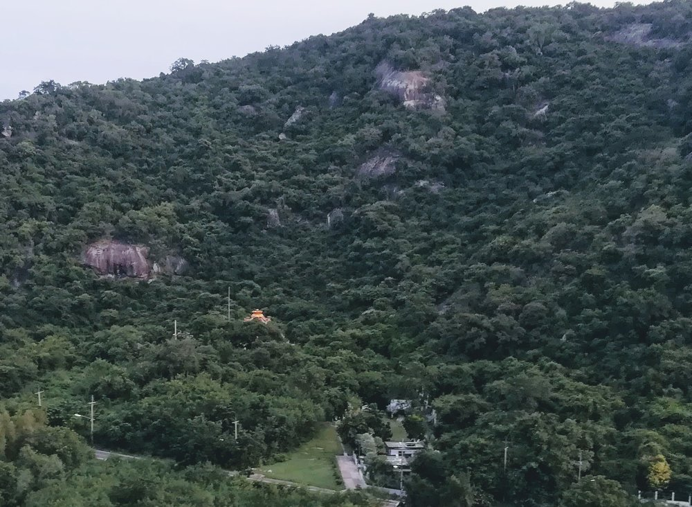 mountain vewi.jpg