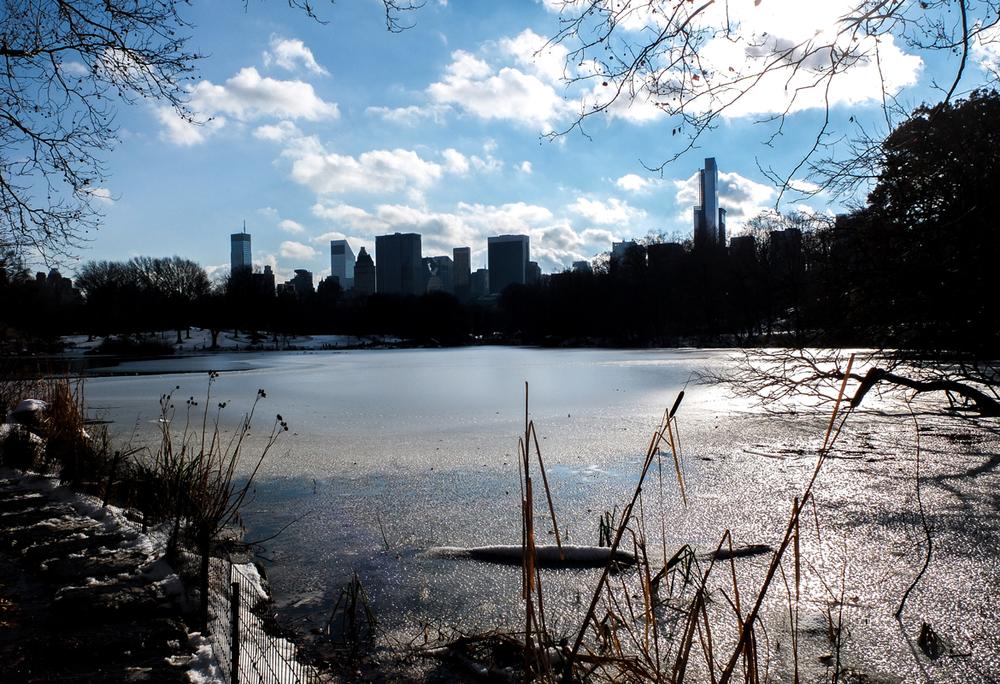 central-park-II.jpg