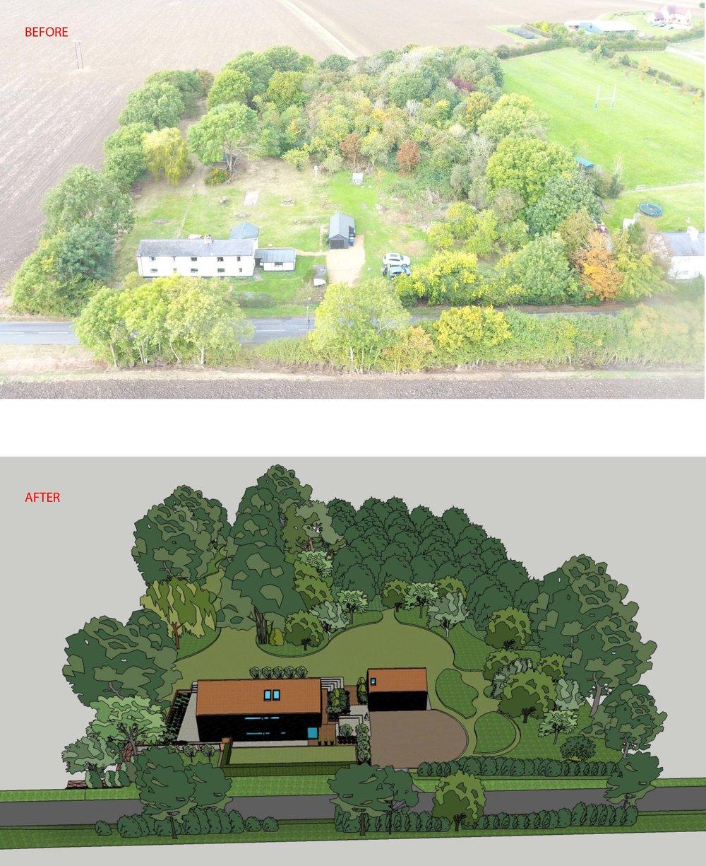 woodview 9.jpg
