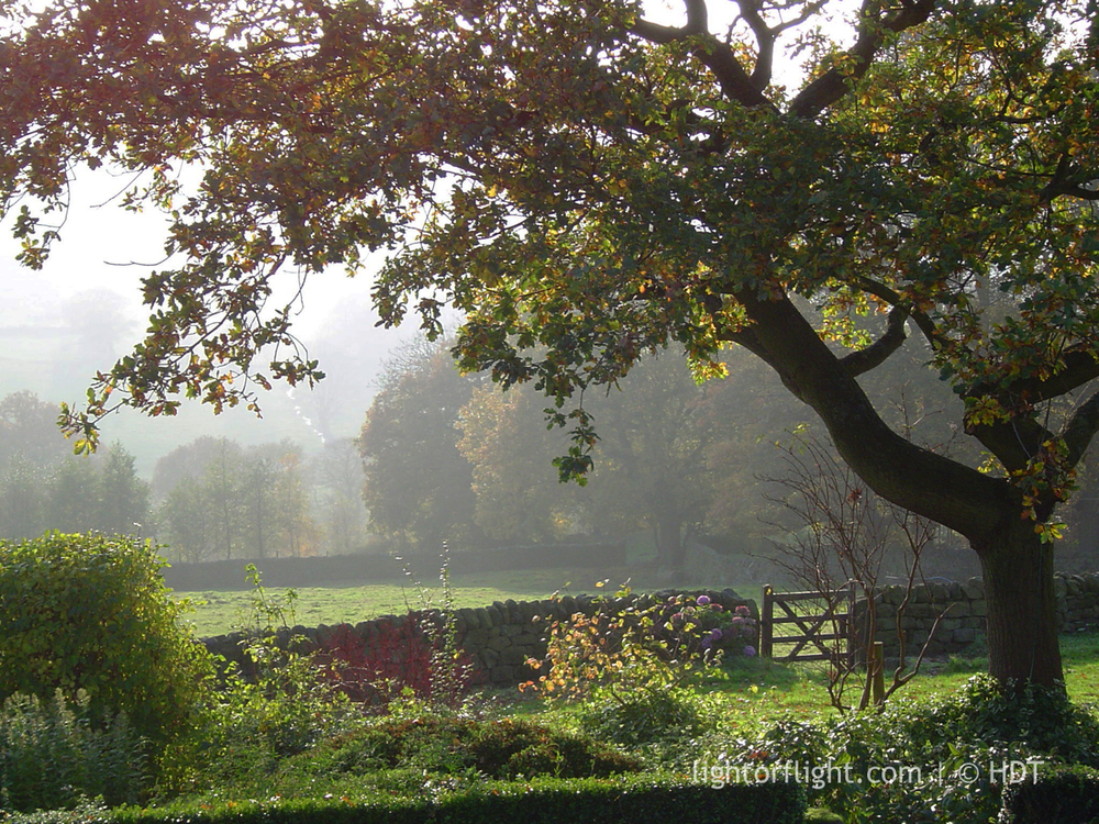 A Yorkshire Garden