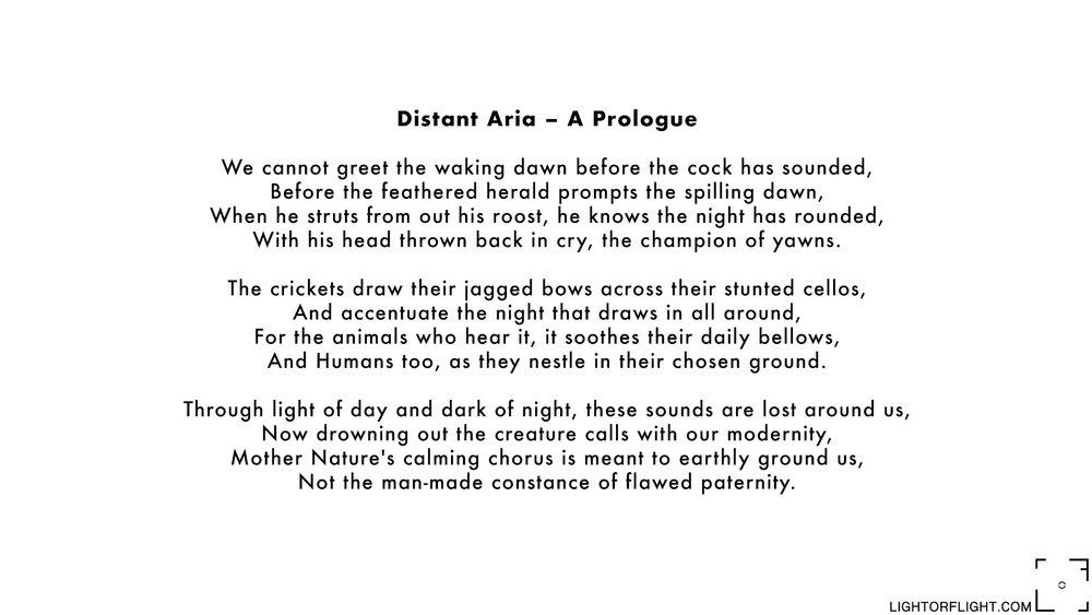 Distant Aria.jpg