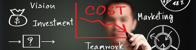 koi-cost.jpg