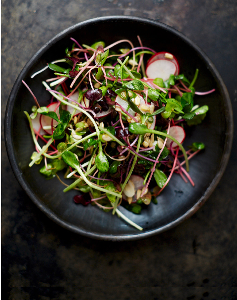 Nourishing - Micro Greens.jpg