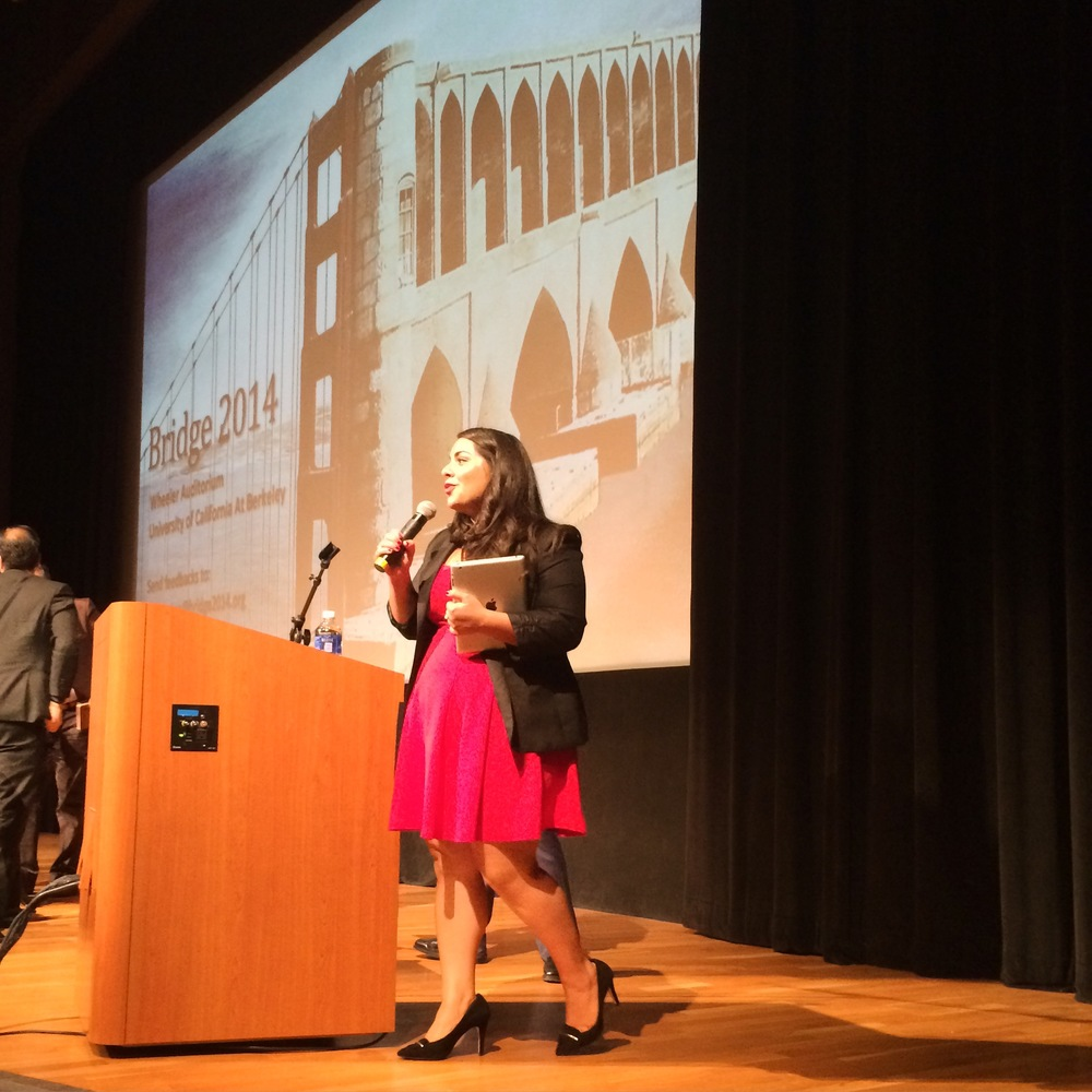 iBridges Inaugural Berkeley Event, 9/2014