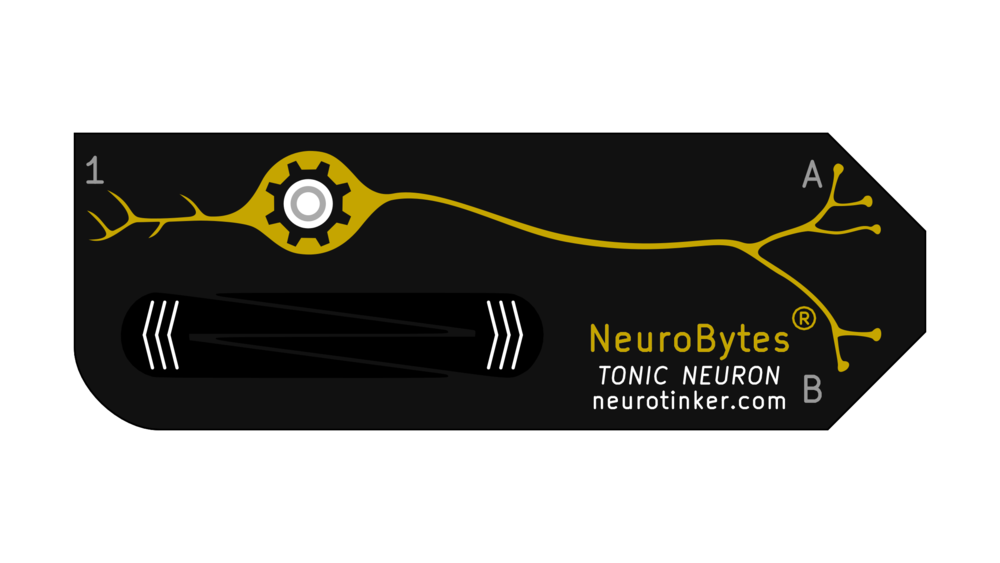 NeuroBytes_Tonic_Neuron.png