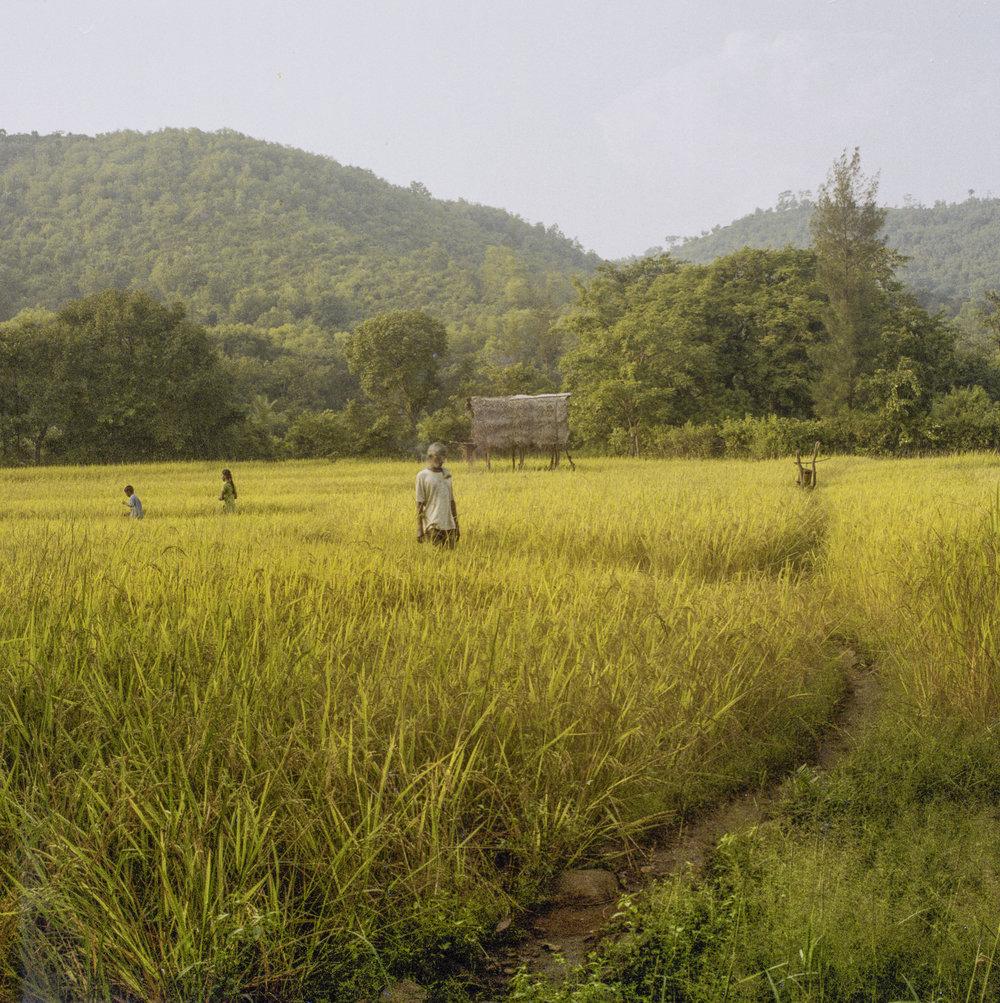 India 037web.jpg
