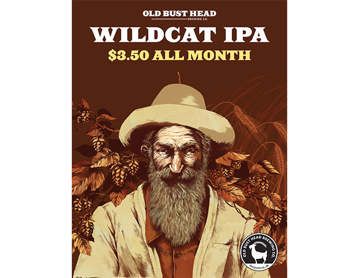 Brixx Wildcat promo.jpg