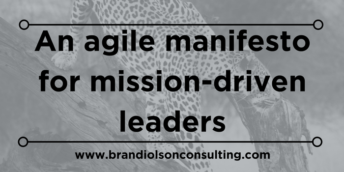 An agile manifesto for mission driven leaders