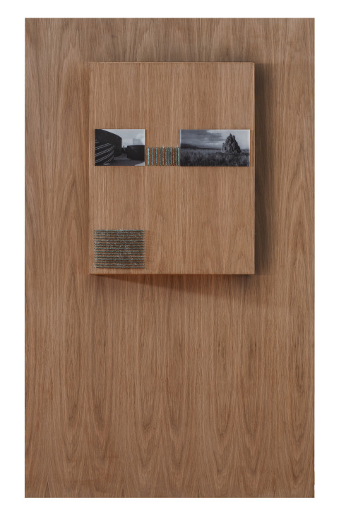 Habitat IV Light Box in Oak with Printed Images and Wool 160 x 90 cm 2014
