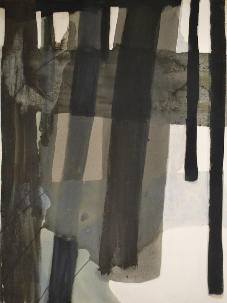 Série Paisagens_Inside Out Acrílico, Tinta da China e Tinta Permanente sobre Papel 100 x 70 cm 2006