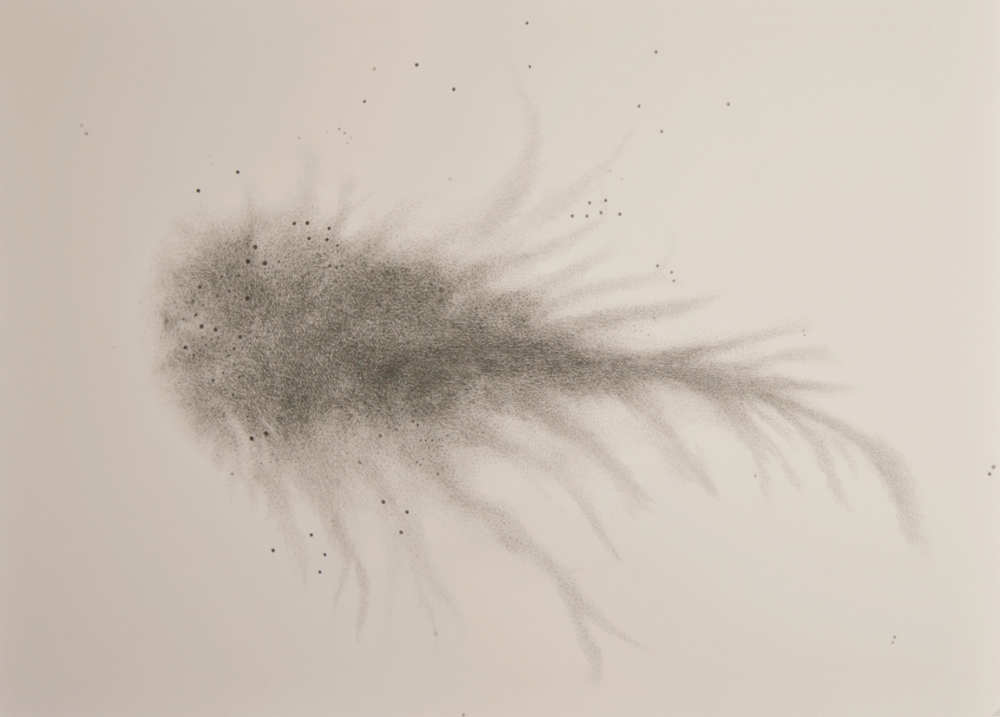 Crabula Nebula Graphite on Arches Paper 80 x 60 cm 2013