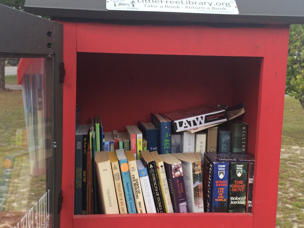 teenlittlelibrary