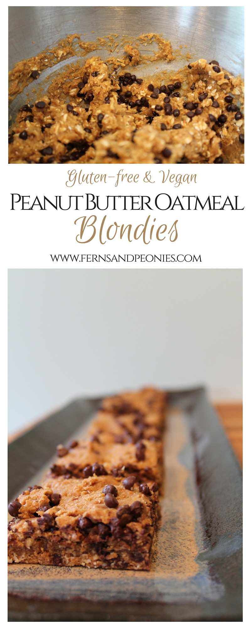 Peanut Butter Oatmeal Blondies (GF,V) from www.fernsandpeonies.com