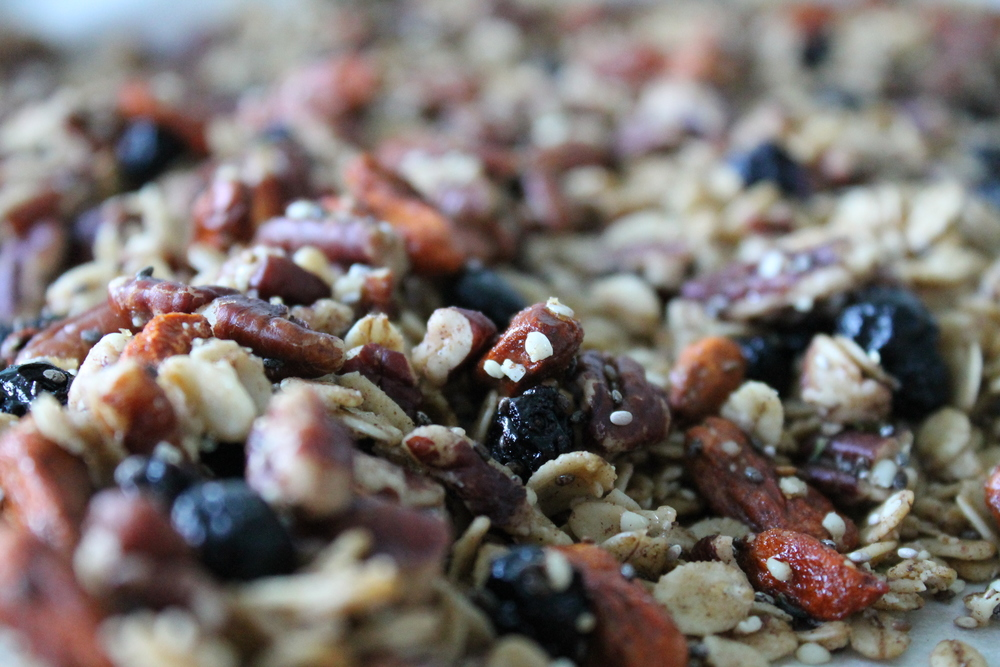 Gluten-free, vegan and refined sugar-free Blueberry Maple Pecan Granola. Made with coconut oil and pure maple syrup for the perfect amount of sweetness. Find the recipe at www.fernsandpeonies.com