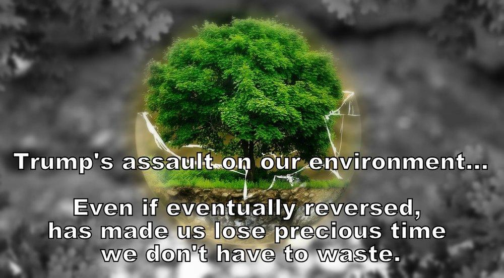 Environmental - edit.jpg