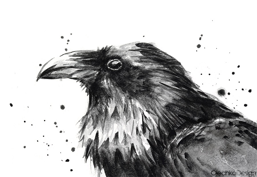 raven-watercolor-art.jpg