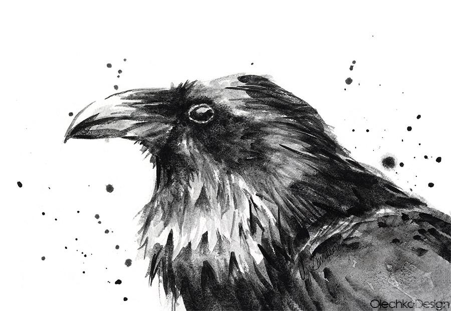 raven-watercolor-art.jpg