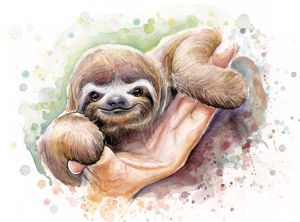 sloth-watercolor.jpg