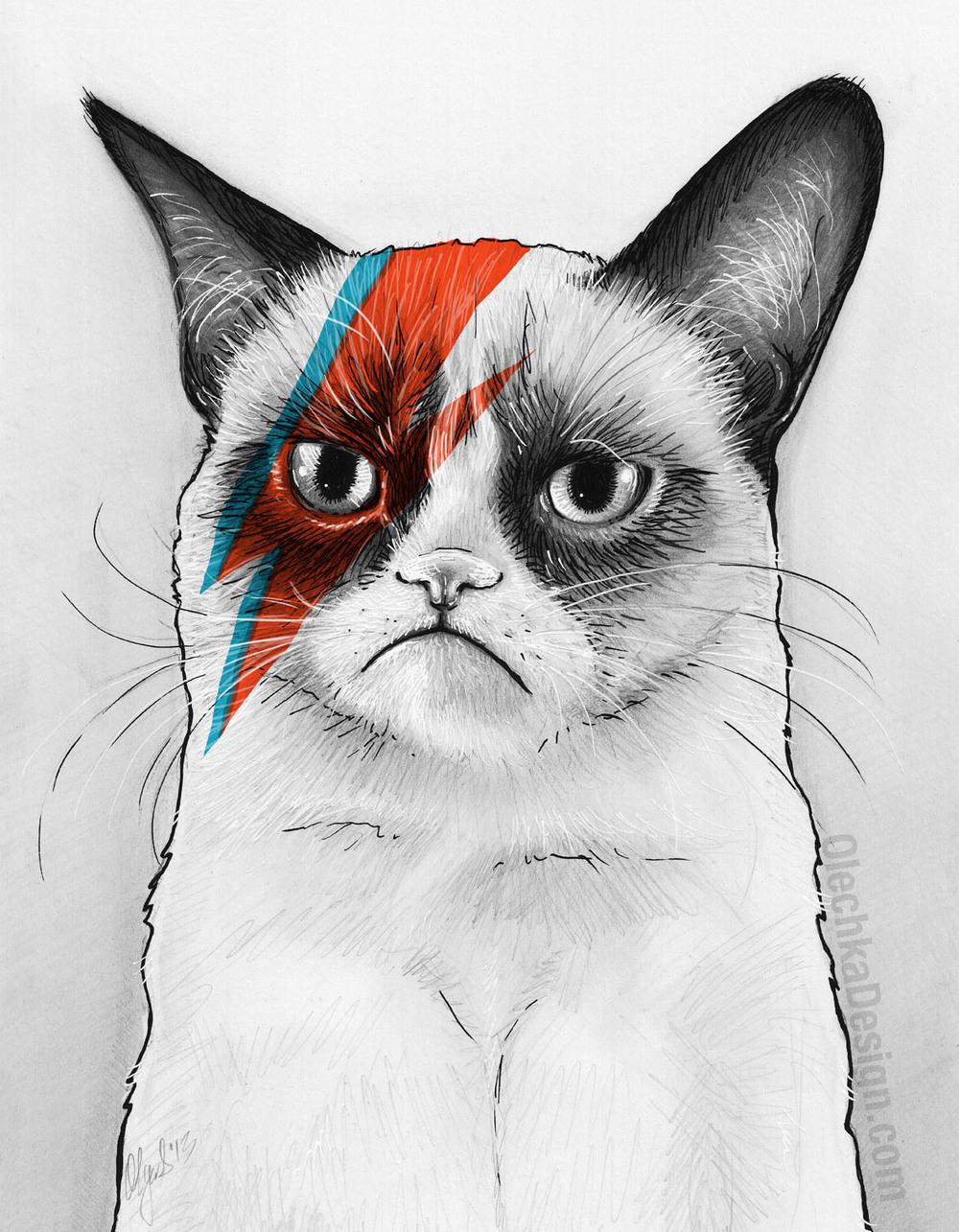 Grumpy Cat as David Bowie by Olga Shvartsur