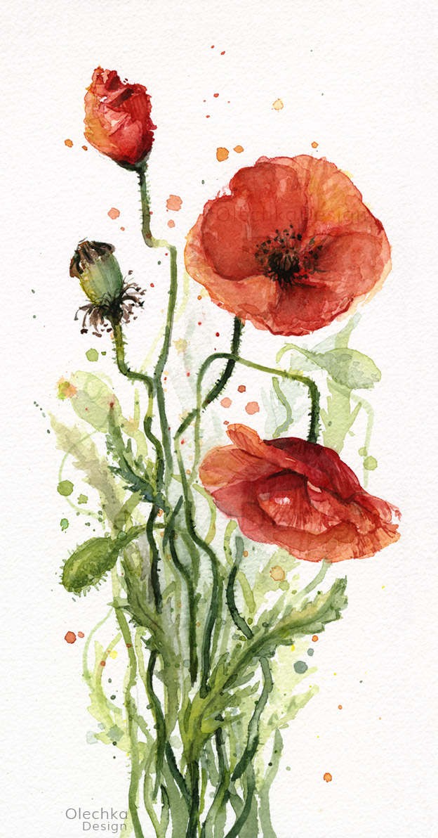 Poppies-red-watercolor-painting-olechkadesign.jpg