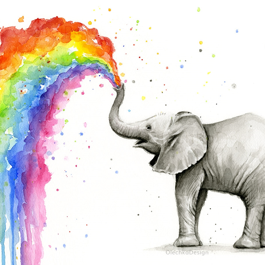 Baby-elephant-spraying-rainbow-olechkadesign House Plants For Sale Seattle on mls seattle, apartments for rent seattle, houses on the sound in seattle,