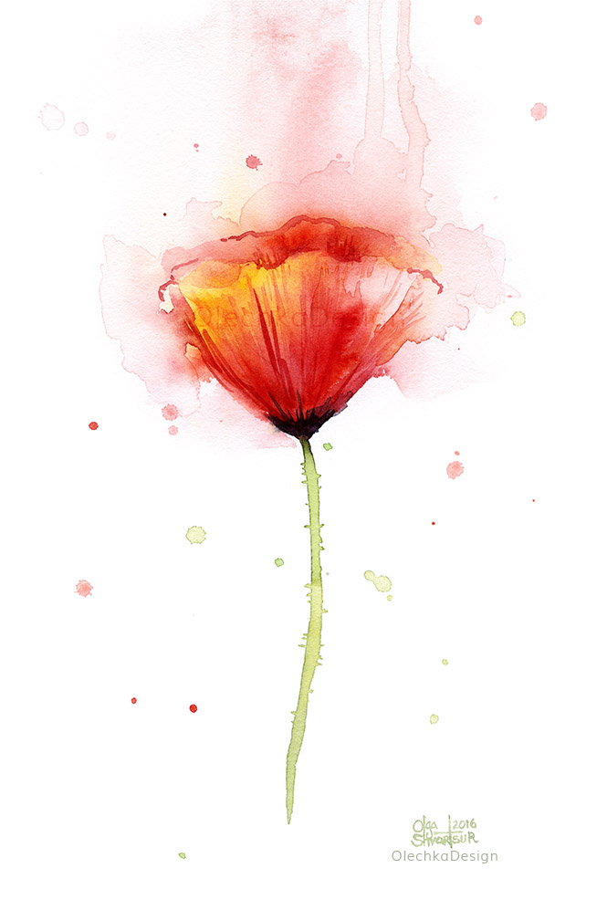 Poppy-watercolor-abstract-flower-OlechkaDesign.jpg