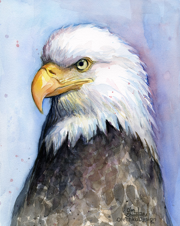 Eagle-painting-watercolor-portrait-olechkadesign.jpg