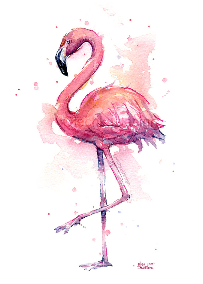 Flamingo-watercolor-portrait-tropical-bird-painting-olechkadesign.jpg