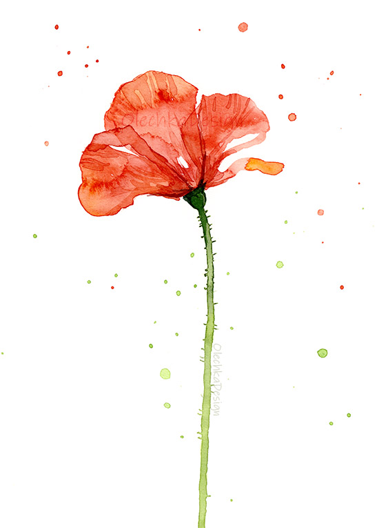 poppy-flower-red-watercolor-painting.jpg