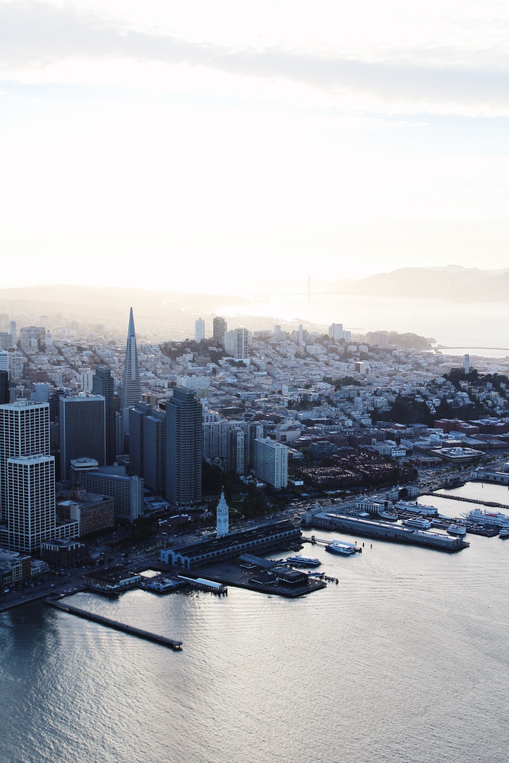 San Francisco by Catherine Alyce