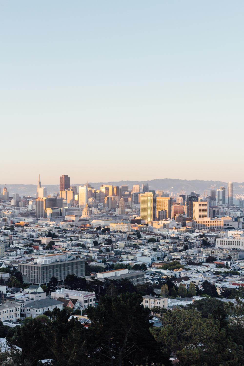 View From Corona Heights by Catherine Alyce