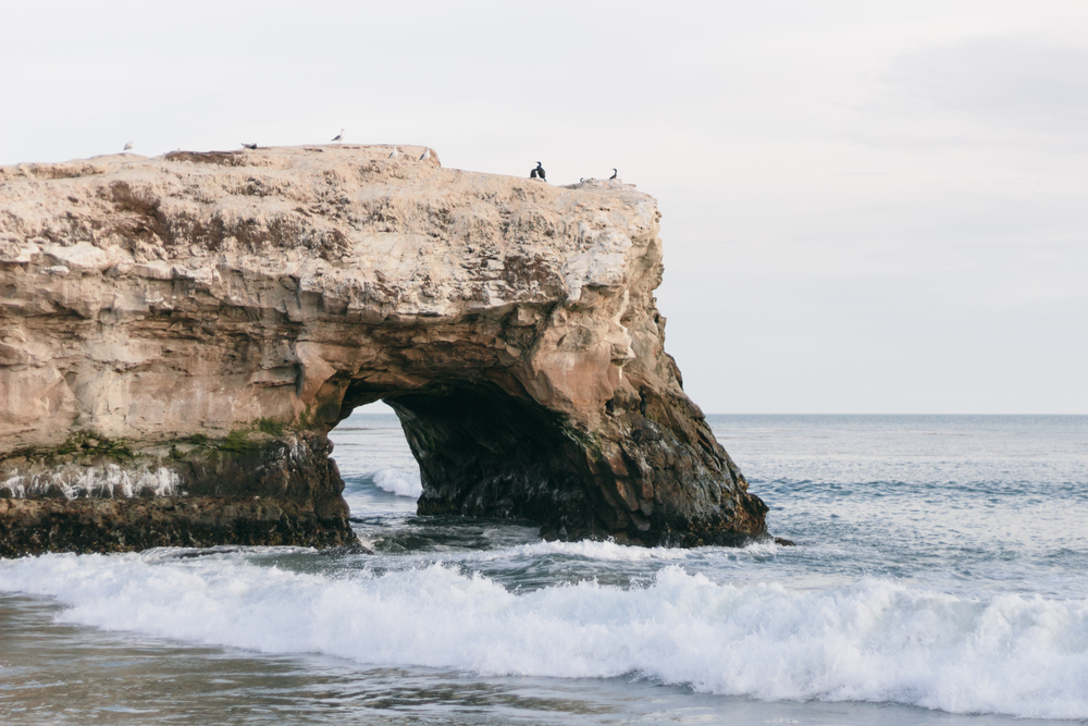 Natural Bridges State Beach by Catherine Alyce