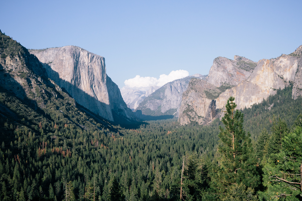 Yosemite Valley by Catherine Alyce