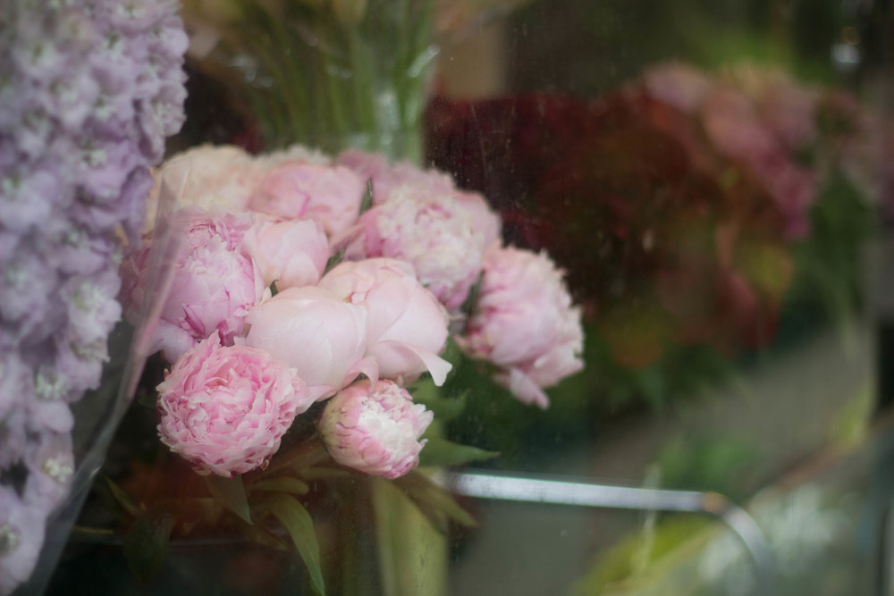 peonies new york flower market.jpg
