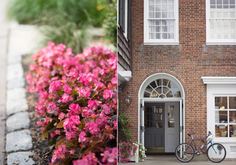 princeton bike flower campus korrelatik walksmilesnap.jpg