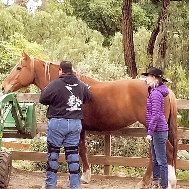 A man in pain...emotional and physical wounds from the past. Sophie & I have moments in the arena working with clients that are indelible memories in my heart 💜...to love and be loved...to feel and heal...this is the path I choose to walk and I am grateful.  #equineguidededucation #saveawarrior #traumarelease #experientiallearning #equinetherapist #sophietherapyhorse #malibuhorsewoman