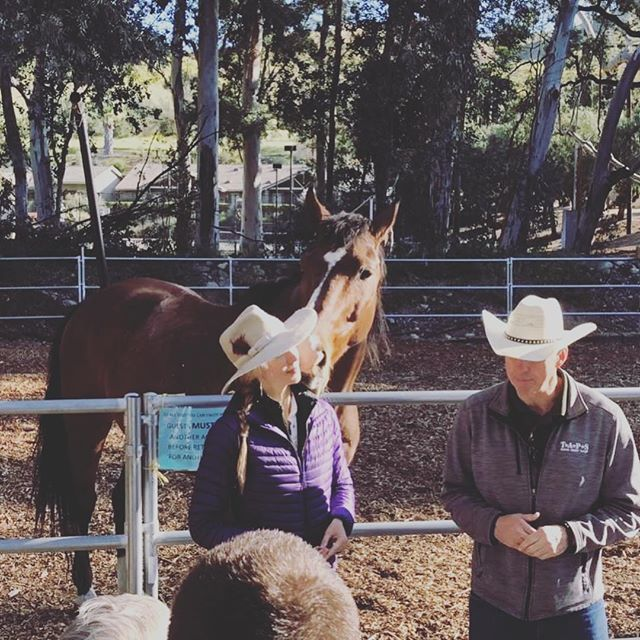 """One of the biggest gifts I've received through my work as an equine therapist is collaborating with other men & women that are committed to a life of service and healing for those struggling with PTS (post-traumatic stress). The man standing next to me in this pic from our opening circle yesterday at Save a Warrior...he's a TRUE statesman...a wise elder...a dear colleague and friend. Brad Gallup @truenaturediscovery ...Thank you, thank you for having my back and for all the times you remind me, """"Natalie, just return to love...just keep returning to love."""" 🙏💜🐴 #equineguidededucation #equinetherapist #returntolove #horsehealing #statesman #justsaveone #saveawarrior #"""