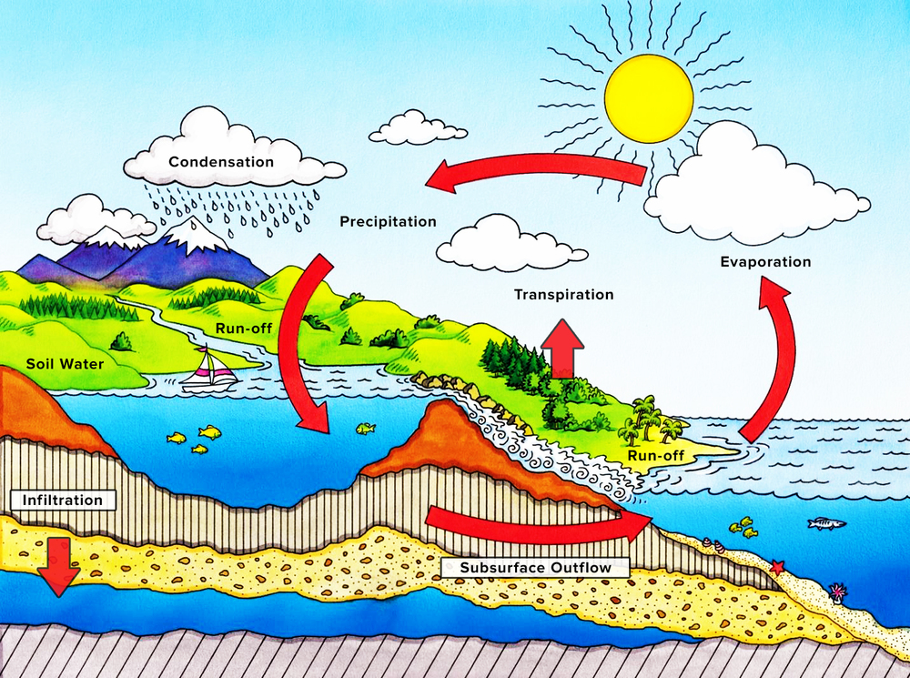 The Hydrologic Cycle   Credit