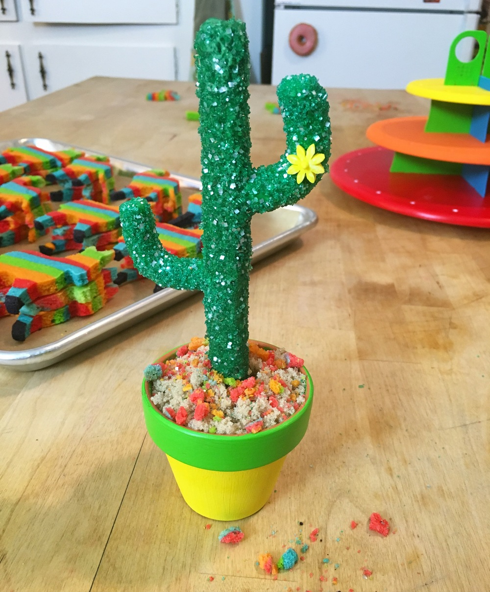 CONFECTION- cactus.JPG