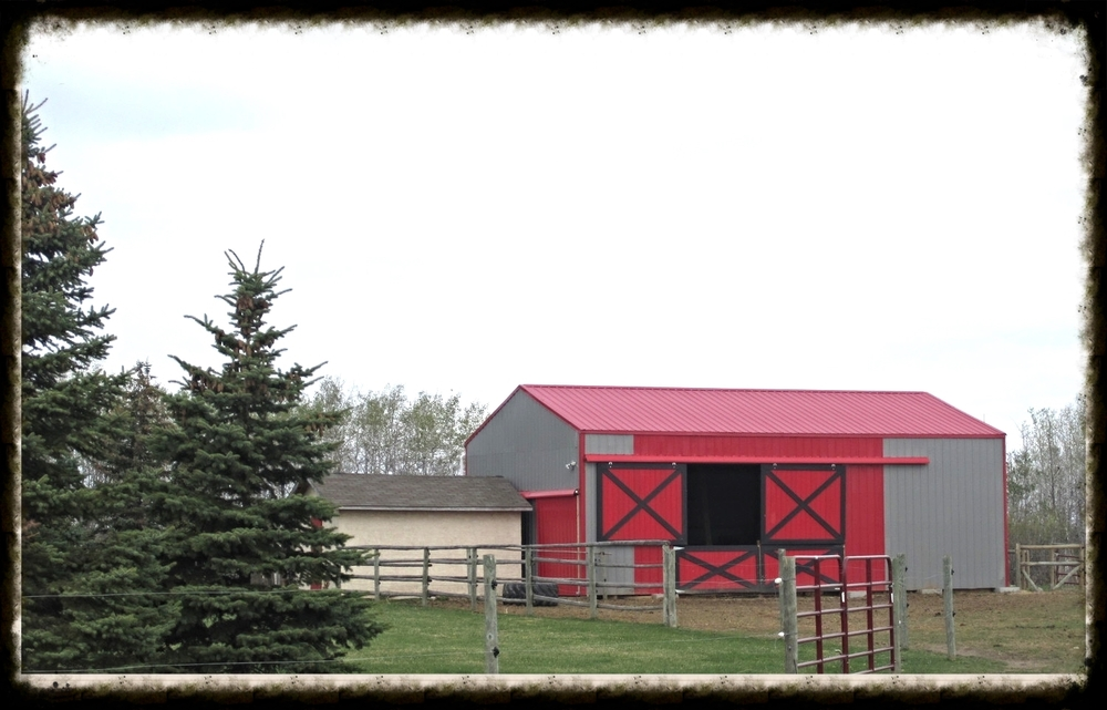 The hay shed is equipped with a 10x20 birthing stall