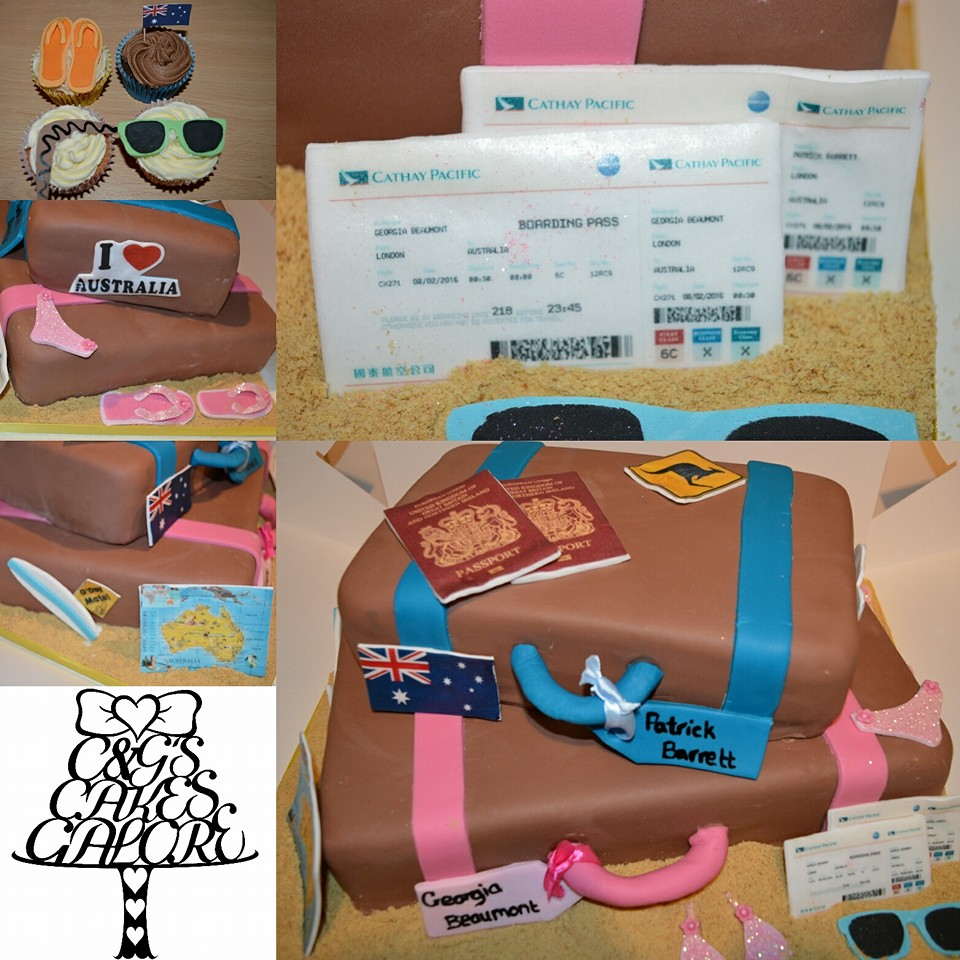 Travel Cake and Cupcakes