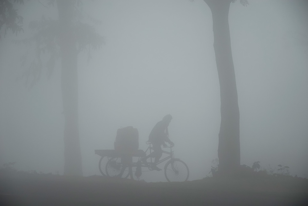 Hauling water in the early morning mists of West Bengal, India.