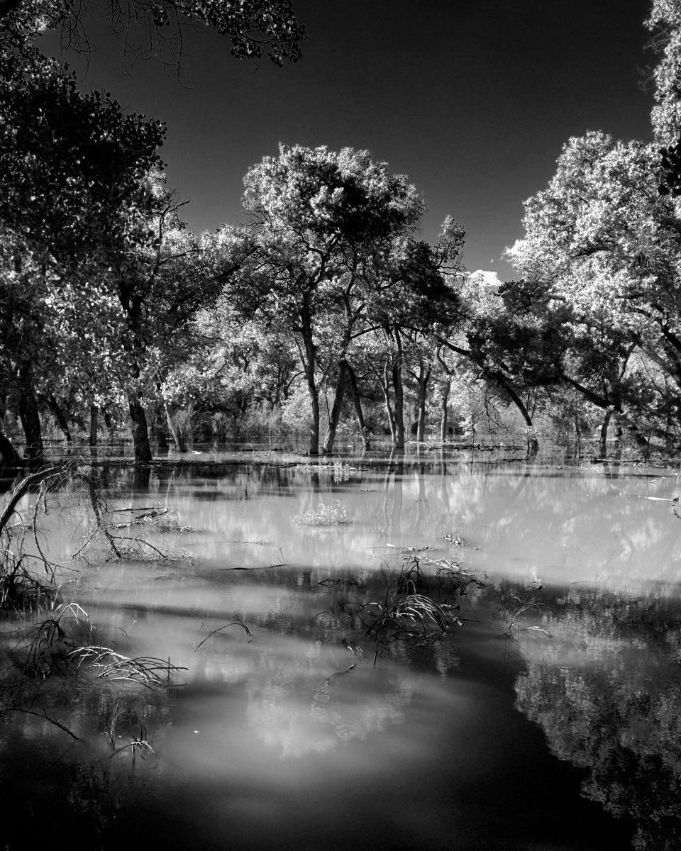 Rio Grande 68.jpg