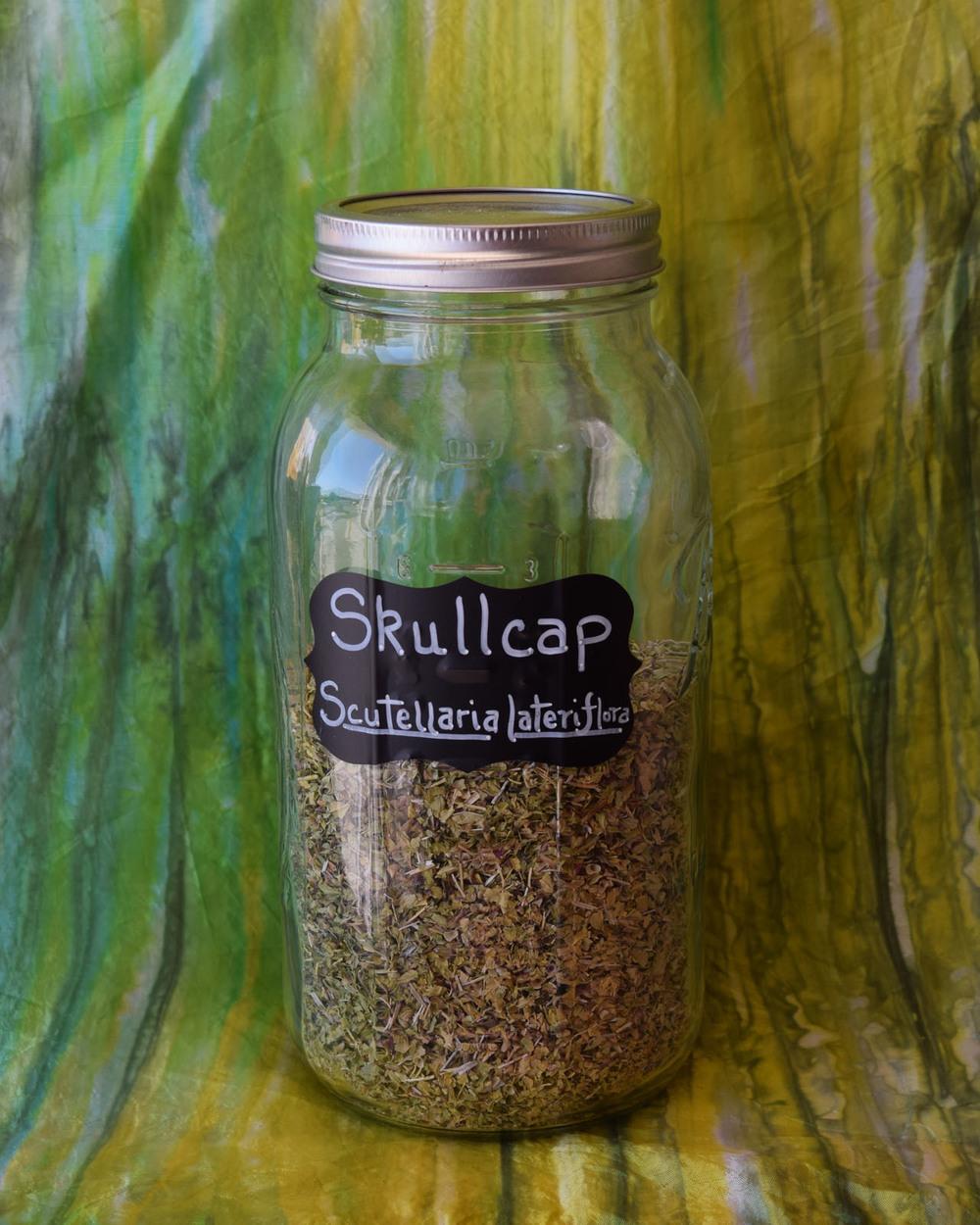Skullcap*