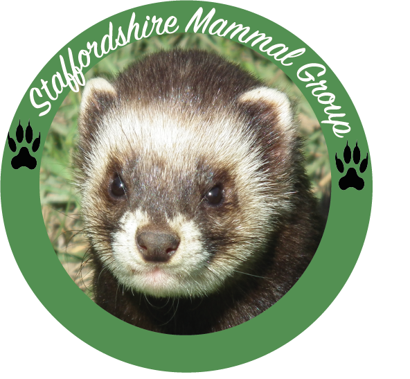 Staffordshire Mammal Group