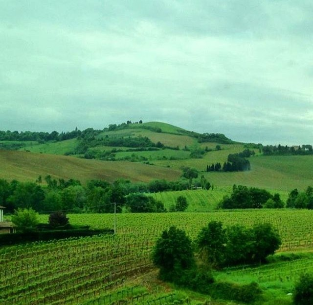 Our tour through Tuscany could help you learn useful new words!