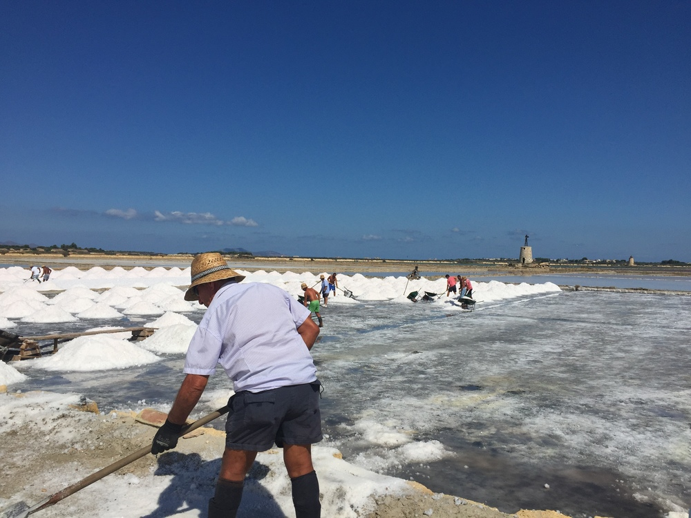 Helping out in a Sicilian Salt Marsh for the day!