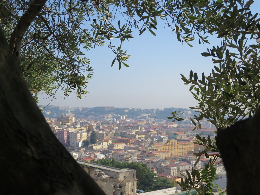 Napoli from just a few steps above the city | Pic Courtesy    of Icons Wanted