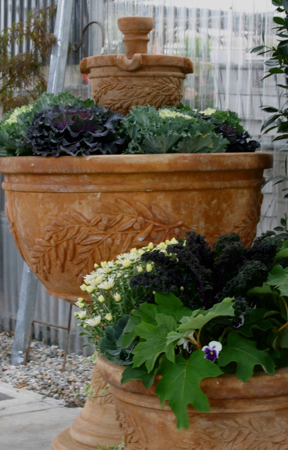 Garden Stores — Cactus & Tropicals